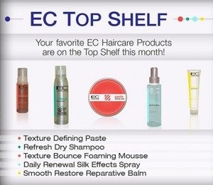 EC-Top-Shelf-300x260